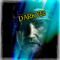 darky12 képe